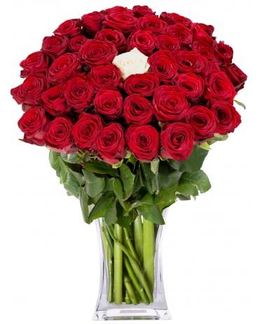18 růží k narozeninám K NAROZENINÁM | FLORA   ONLINE 18 růží k narozeninám