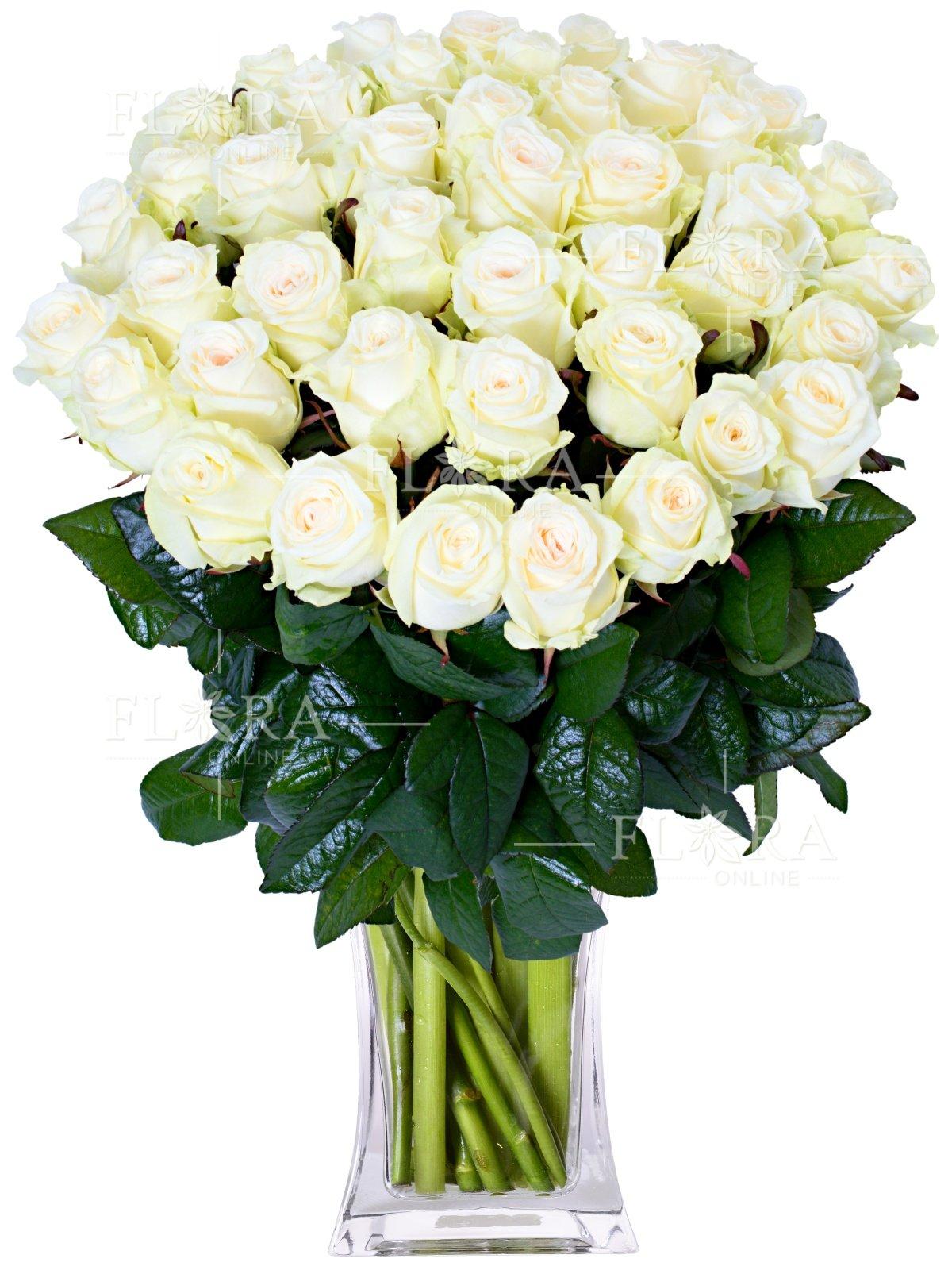 фото открытку из белых роз букет красивый него начиналось знакомство